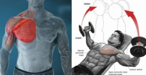 40 Minute Chest Workout For Bigger & Stronger Chest