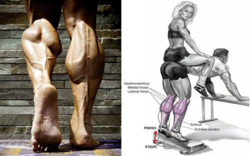 8 Mistakes That Are Keeping Your Calves Small