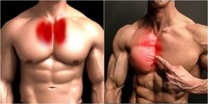 Chest Workout : 3 Exercises To Target Inner Pecs