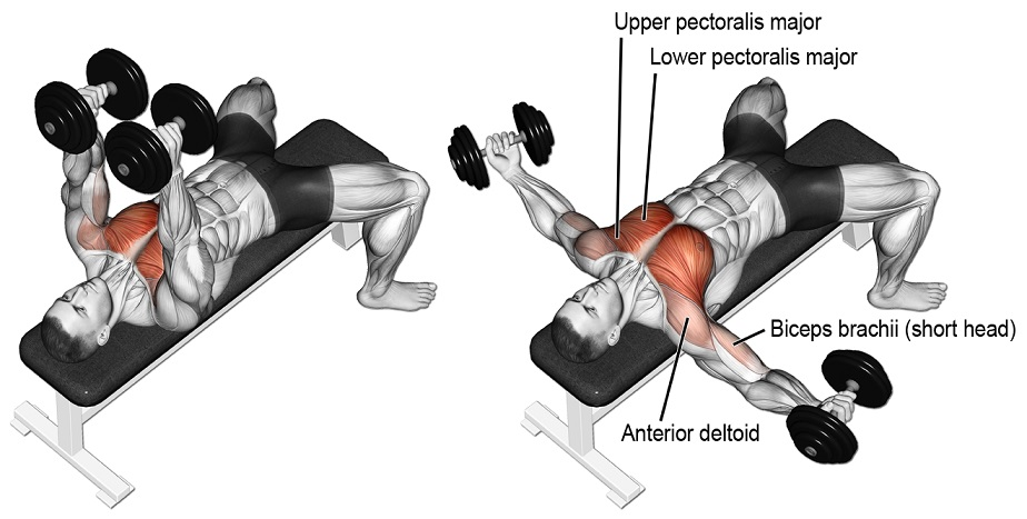 3 Best Exercise To Target Inner Chest Fitness Workouts