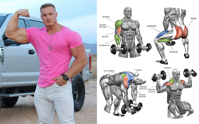 Gain Muscle Mass Using Only Dumbbells With 10 Demonstrated Exercises Fitness Workouts & Exercises