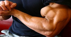 Build Mountain Like Biceps Peaks With these 3 Exercises