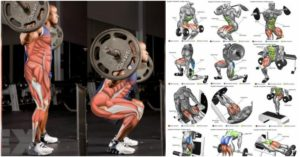 Gain Leg Mass With This 4 Week And Daily Multiple Exercise Plan