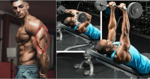 The Top 4 Exercises To Get Prefect Triceps