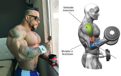 8 Things You Must Do to Build Maximum Muscle