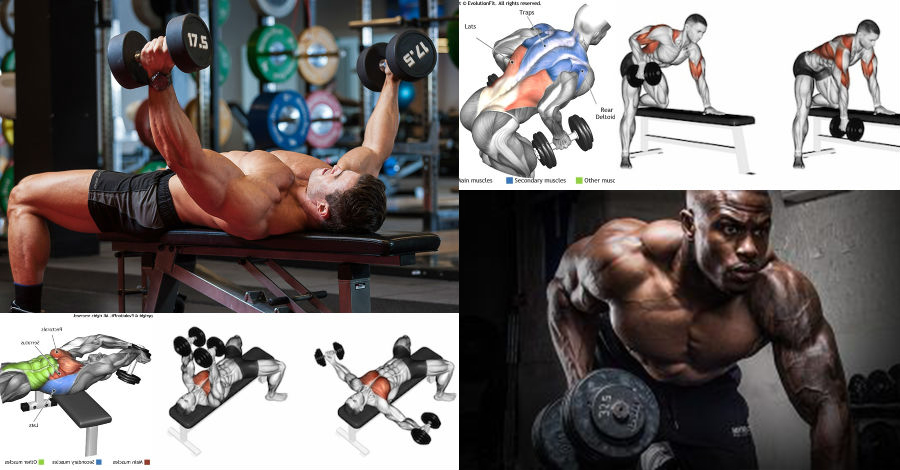 The 4-Week Dumbbell Workout Plan Part 1: Chest And Back | Fitness