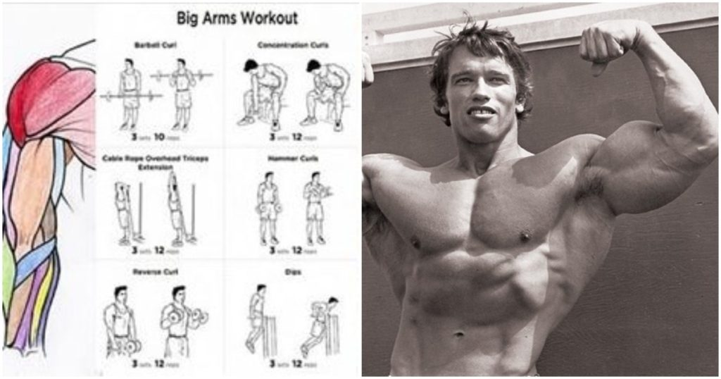 The 18 Best Dumbbell Exercises For Biceps Fitness Workouts Exercises