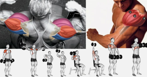 The 4-Week Dumbbell Workout Plan Part 4: Shoulders