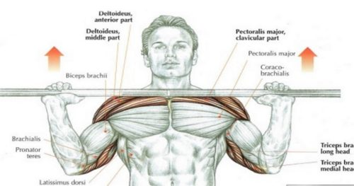 Ways to Shoulder Press