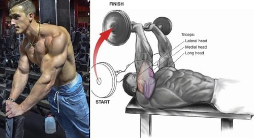 Triceps Skull Crushers: 3 Variations for Bigger Triceps