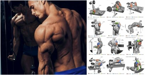 Triceps Workout: 3 Superset Workout Routine For Killer Triceps