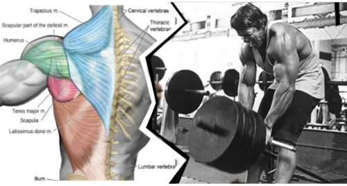 Back Workout: Blast Your Back In 10 Minutes