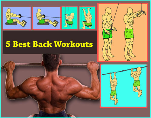 5 Best Back Workout (Lats)