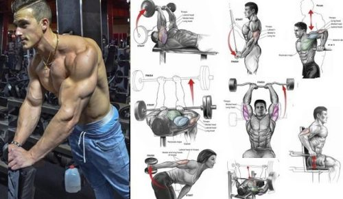 7 Triceps Training Tips & Strategies for Building Bigger Triceps
