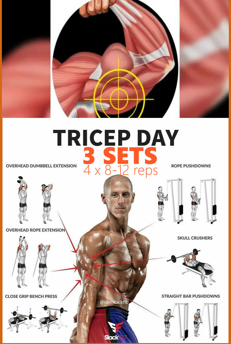 the-best-triceps-workout-of-all-time – Fitness Workouts ...