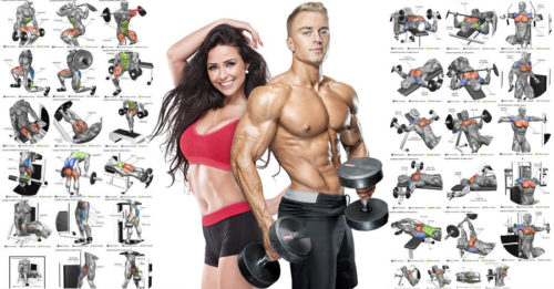 The 25 Best Exercises for Men and Women To Build Muscle