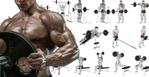Total Body Workout Plan Using Only A Barbell – 15 The Best Barbell Exercises