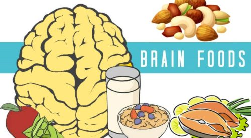 Nutrition for the Brain: Your Guide to Healthy Brain Foods