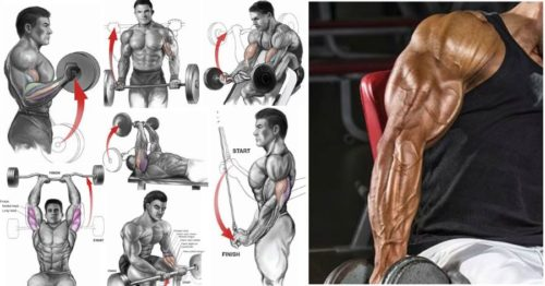 The 6 best bicep and tricep exercises for mass