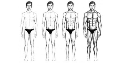 How to build muscle for ectomorphs