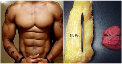 How to Lose The Excess Fat While Keeping Your Muscle