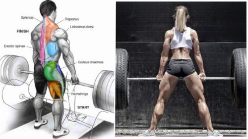 Four Ways to Improve your Deadlift Strength