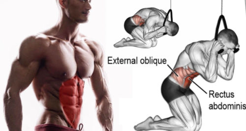 Chisel Your Upper Abs With Cable Crunches!