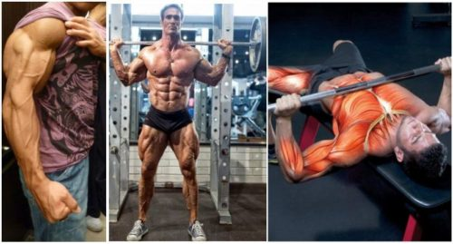 Rest-Pause Training For Maximum Strength And Fat Loss