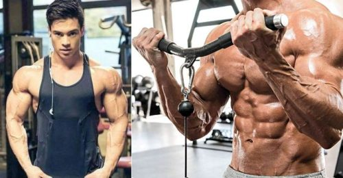 Top 5 Training Tips for Building Muscle