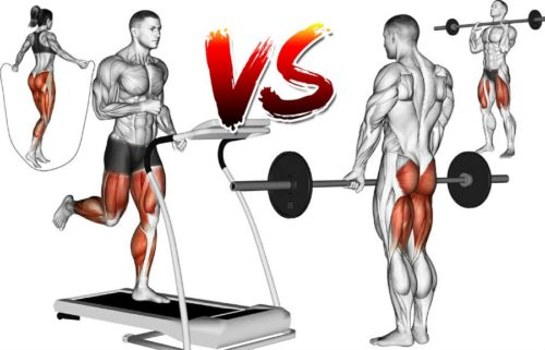 Weights vs Cardio: Which Burns More Fat? Your Guide to the Perfect Body