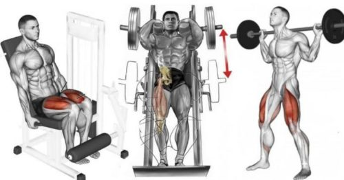 Legs And Shoulder Exercises To Avoid And Exchange For More Beneficial Movements